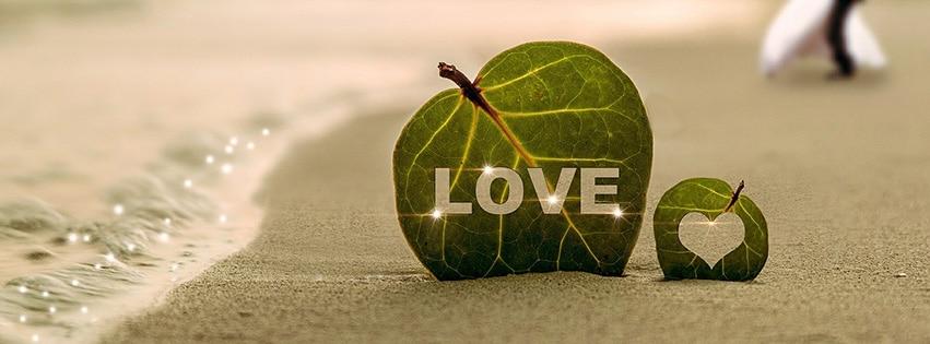 coast-couples,-feuilles-amours