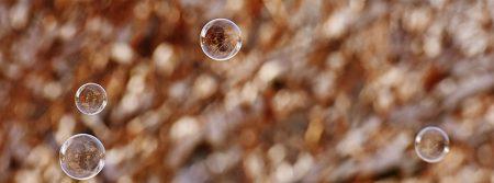 soap-bubble-bulle-de-savon