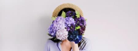 hortensia fleurs violet purple romantique hydrangea fbcouvcom