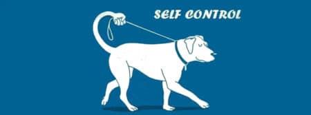 self-control se contrôler rester calme fbcouv.com